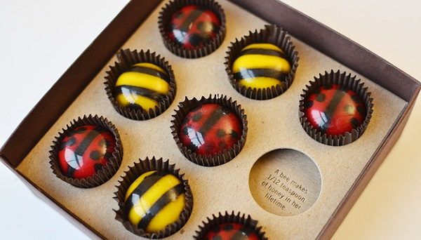 John and Kira's Bee My Lovebugs - Top 15 Chocolate Brands