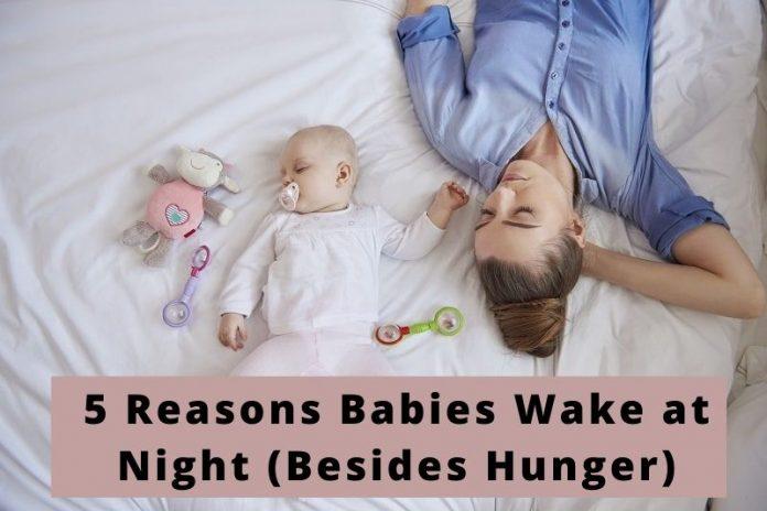 Babies Wake at Night