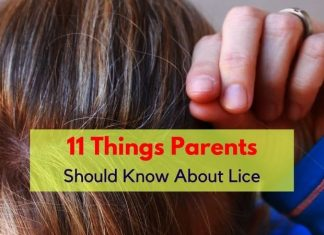 about lice