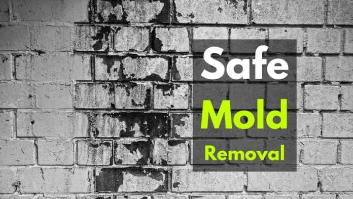 Safe mold removal
