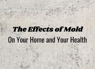 Mold Removal Tips