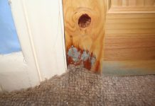 Fix Water Damage on Wood